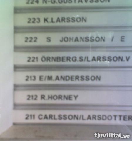 Horney Namn Kåt Göteborg