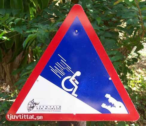 Krokodil safara Sydafrika varning skylt