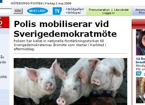 Sverigedemokraterna SD grisar GP