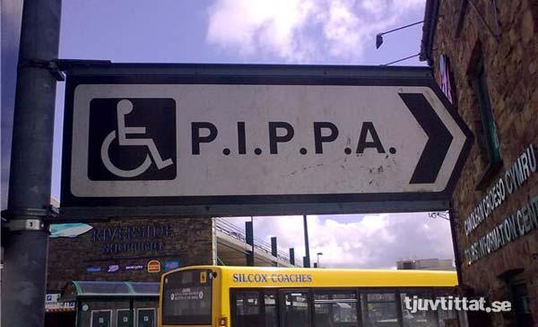 pippa_wales