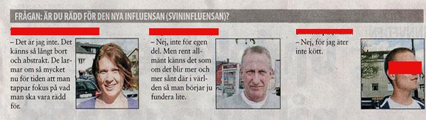svininfluensa_finnveden