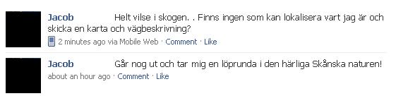 facebook_vilse