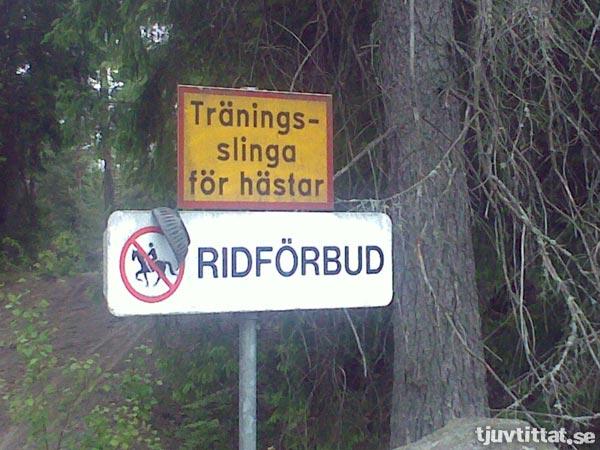 Träningsslinga för hästar. Ridförbud.