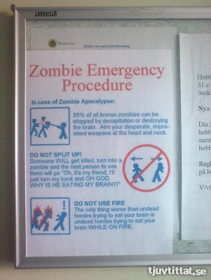 avesta_zombie